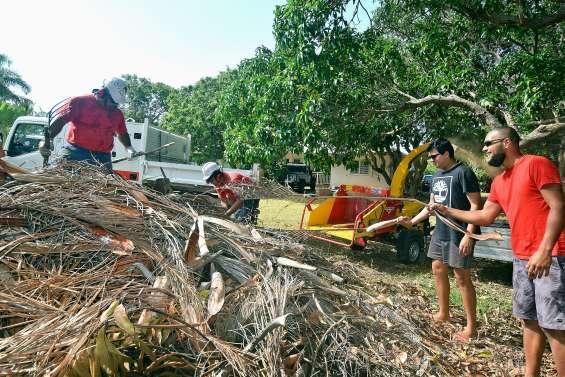 Les déchets verts broyés à domicile jusqu'à samedi
