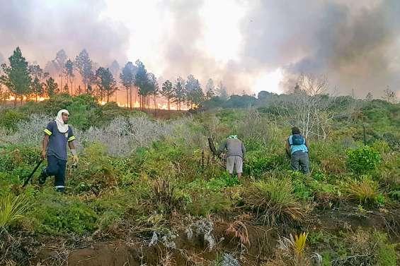À l'île des Pins, Thio et Kouaoua, la situation des incendies est alarmante