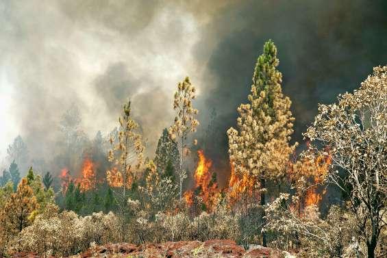 Le point sur les incendies ce samedi