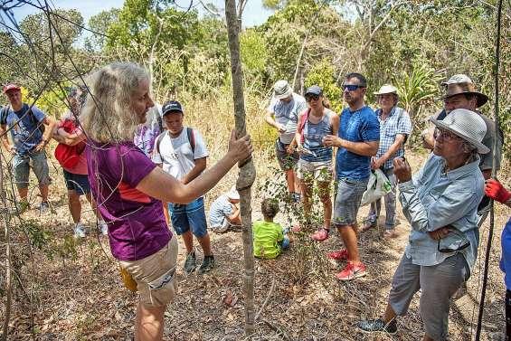 Une matinée à la découverte des espèces rares de la forêt sèche