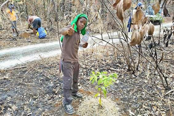 A Hapetra, les enfants et les arbres vont grandir ensemble