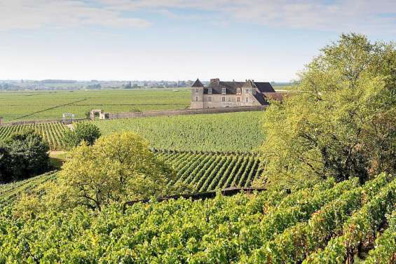 Les viticulteurs contre un projet de révision de l'AOC