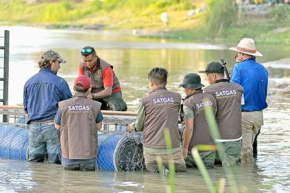Un Australien vient aider à retirer un pneu du cou d'un crocodile