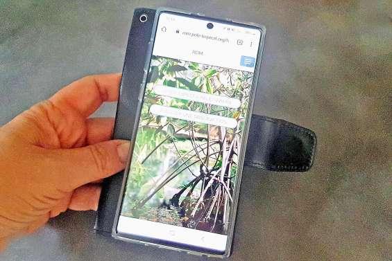 Une application pour préserver la mangrove