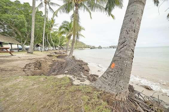 Quelles solutions pour lutter contre l'érosion à la plage de l'Anse-Vata ?