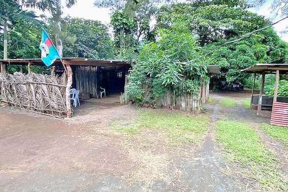 Kava express, laboratoire de pressage, s'installe au nakamal du col de Plum