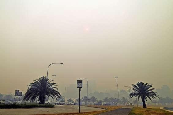 La fumée des incendies à l'origine de centaines de décès