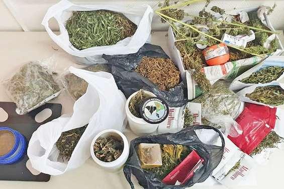 Plus d'un kilo et demi de cannabis saisi à Touho