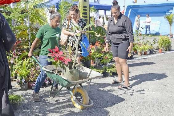 Le Salon jardinage et motoculture ouvert jusqu'à dimanche à Nouville