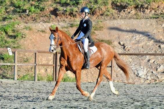 Plus de 200 cavaliers en piste ce week-end à La Tamoa