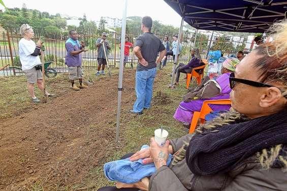 Le sol reprend vie aux jardins partagés du CCAS