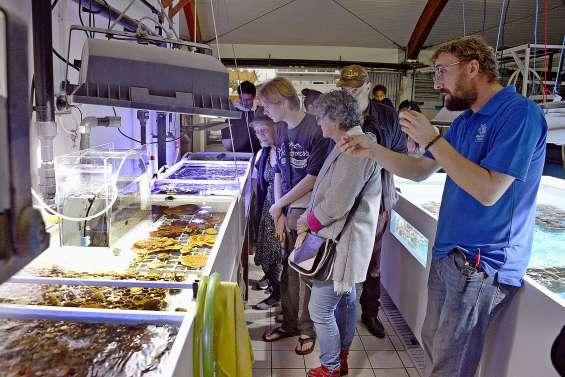 Dernière visite à l'Aquarium  avant la fermeture pour travaux