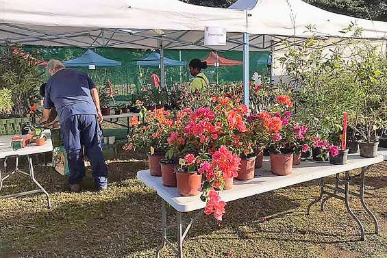 Une quarantaine  de stands à la journée de l'horticulture