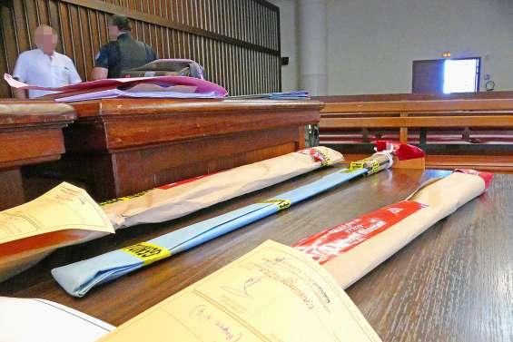 Querelle d'experts psychiatres au procès du présumé fratricide de Canala