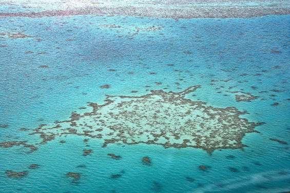 Mer de Corail : le gouvernement contre-attaque