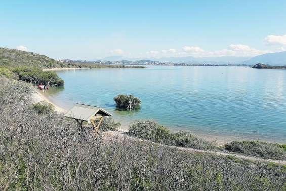 Des navettes pour les îlots Sainte-Marie et Uéré cet été ?