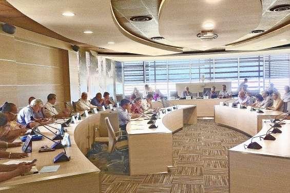 Le Cese pour la réforme des chambres consulaires