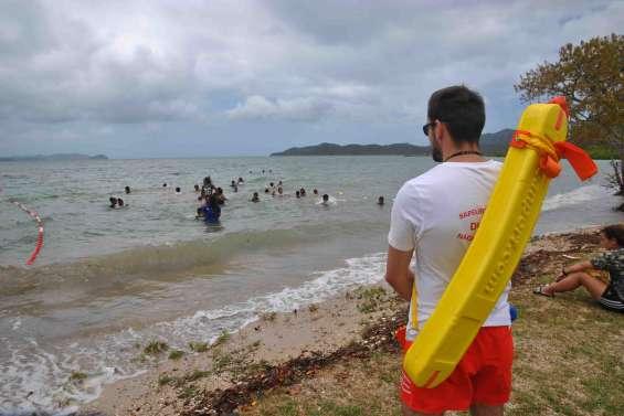 Le point sur la surveillance des plages du Grand Nouméa