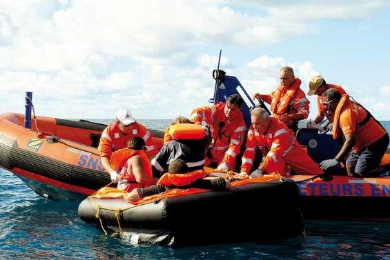 Les saint-bernard du lagon, par solidarité