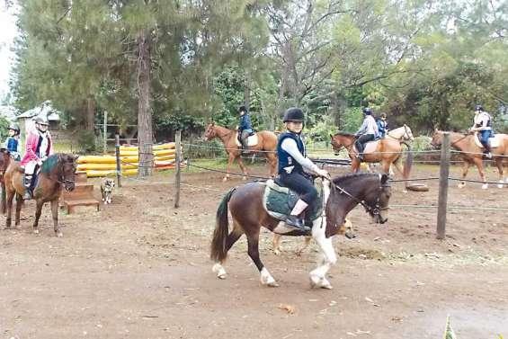 L'équitation en cadence