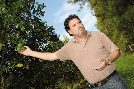 De nouveaux fruits demain en Calédonie ?