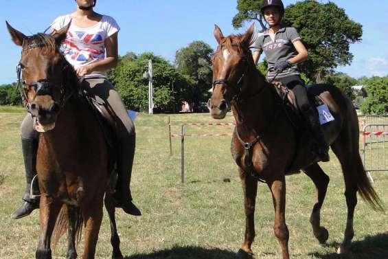 Le cheval était roi à Déva