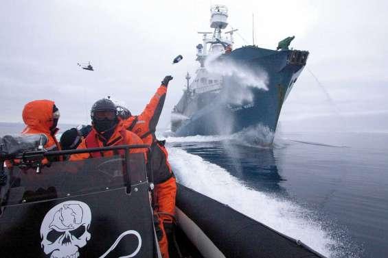 L'« éco-pirate » à l'abordage