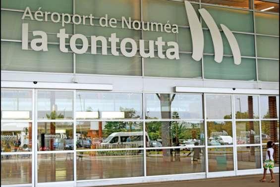 Une trentaine de chevaux ont atterri à La Tontouta