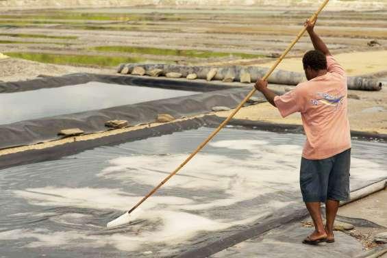 Pêcheurs de sel à Kô