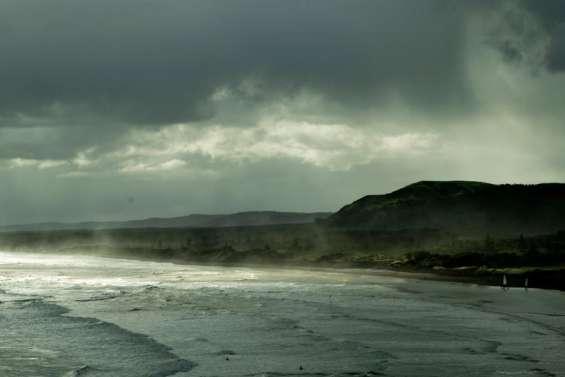 Les Kiwis dans la tempête