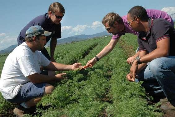 L'agriculture responsable prend racine dans le pays