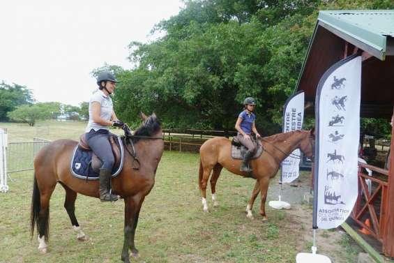 Des cavaliers à Déva