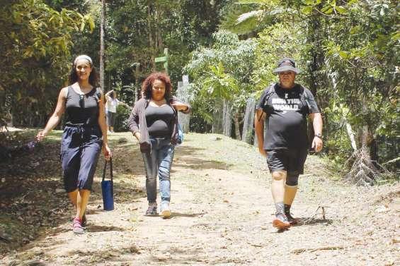 Les Réunionnais parcourent les Grandes Fougères