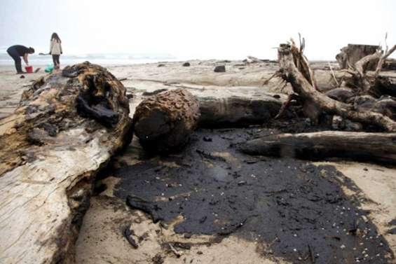 Les plages kiwies broient du noir