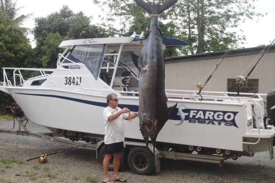 Un marlin de 3 mètres sur La Frégate