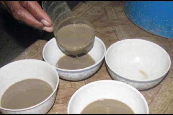 Le kava s'exporte bien, sauf...