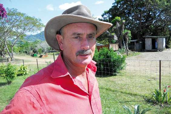 Daniel Guépy, pionnier du mouton