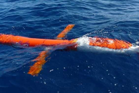 Un requin blanc attaque le sous-marin de l'IRD