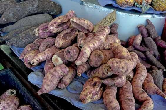 Les exportations de Lifou ont la patate !