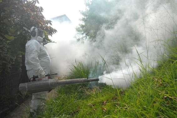La dengue débarque à Goa