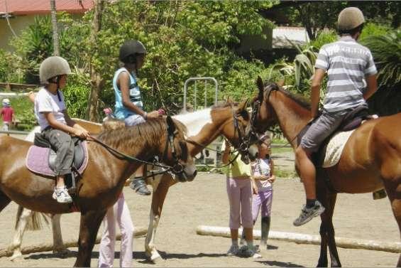 Chevaux et cavaliers en ville