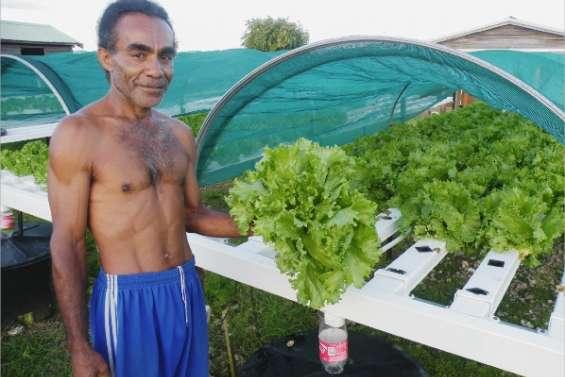 Les salades du bonheur