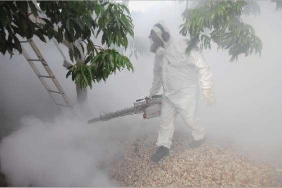La dengue tape dans le 1000