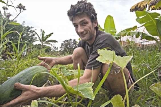 Dans le sillon des bio-cultivateurs