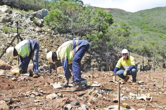 La révolution de la chimie verte passera par les mines