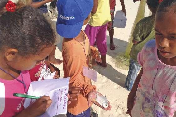 Les petits ethnologues  d'Ouvéa sillonnent le terrain