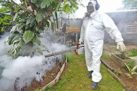 L'épidémie de dengue est déclarée