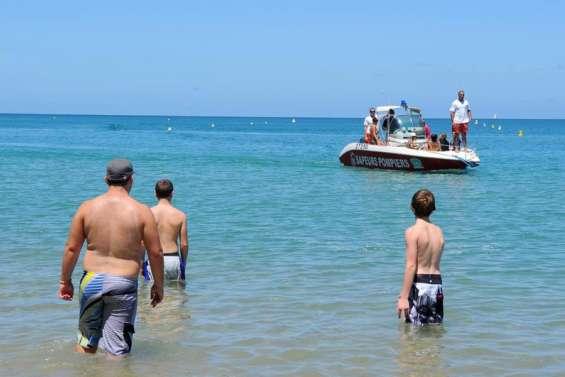 Les requins vont à la plage