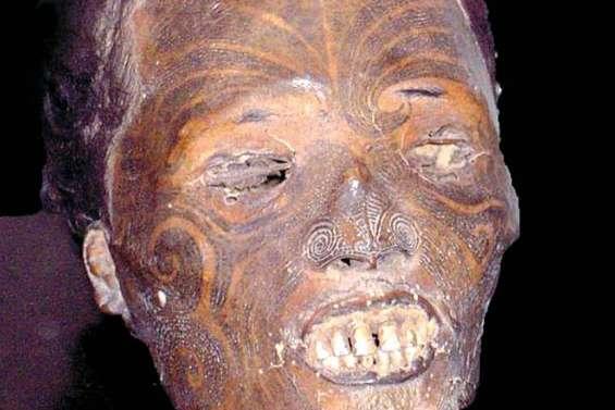 Le retour d'une tête maorie
