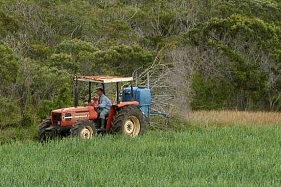 Une victoire des pesticides